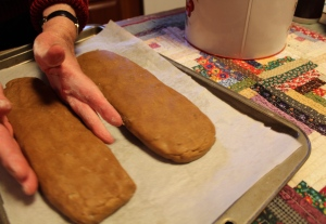 Shape the dough into two long loaves with your hands.