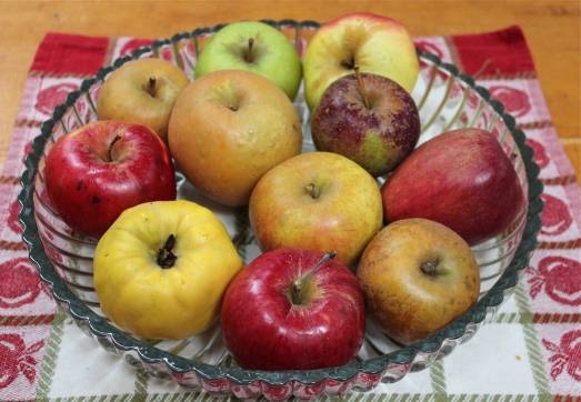 A few of the many heritage apples grown at Scott's Orchard.